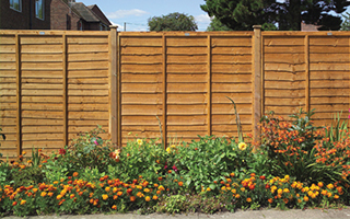 Fence Panels Devon